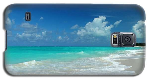 Iguana Island Caribbean Galaxy S5 Case