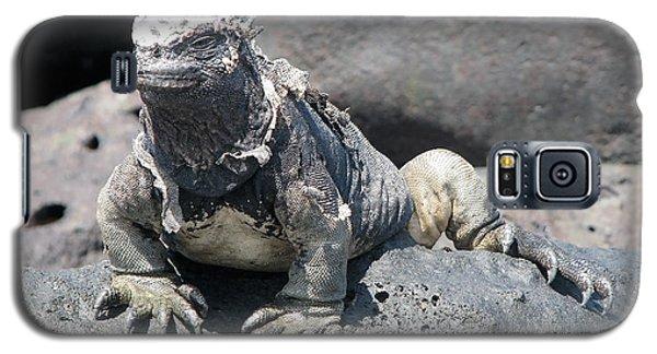 Iguana Or Prehistory Survivor Galaxy S5 Case