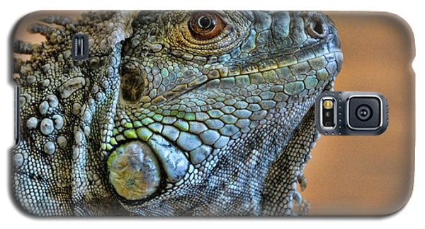 Iguana Galaxy S5 Case by Robert Knight