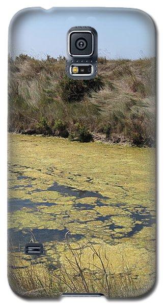 Ile De Re - Marshes Galaxy S5 Case