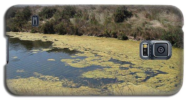 Ile De Re - Marshes Galaxy S5 Case by HEVi FineArt