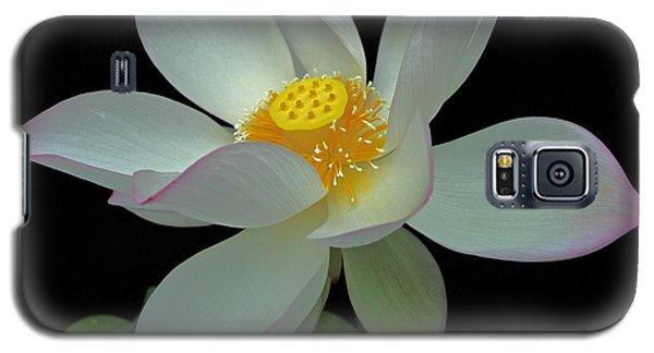 Illuminated Throne Of Buddha Galaxy S5 Case by Dodie Ulery