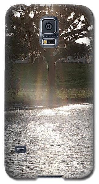 Illuminated Tree Galaxy S5 Case
