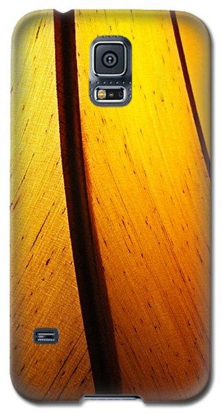 Galaxy S5 Case featuring the photograph Illumination by Debi Dmytryshyn