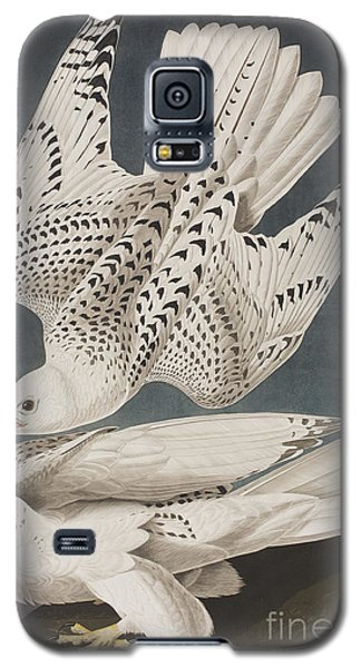 Illustration From Birds Of America Galaxy S5 Case