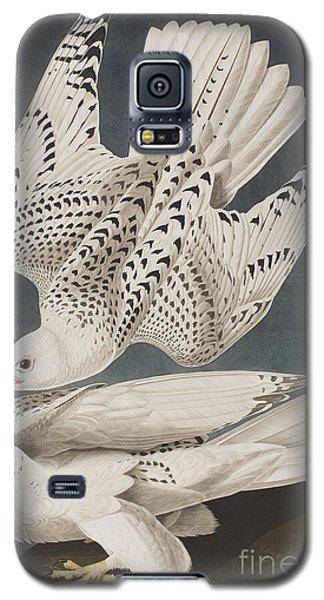 Illustration From Birds Of America Galaxy S5 Case by John James Audubon