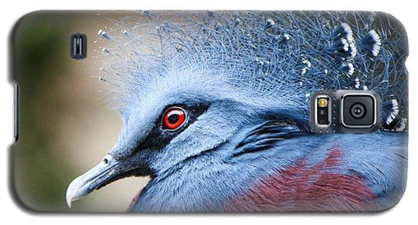 Illustrious Galaxy S5 Case