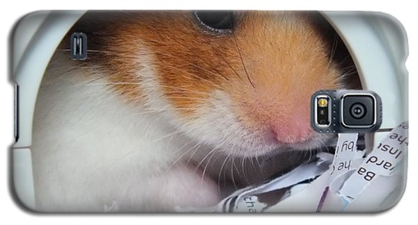 I'm Keeping My Eye On You Galaxy S5 Case by Vicki Spindler