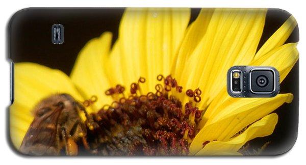 Honey Bee Sweetness Galaxy S5 Case