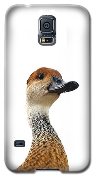 I'm Not Quacking Galaxy S5 Case by Darla Wood