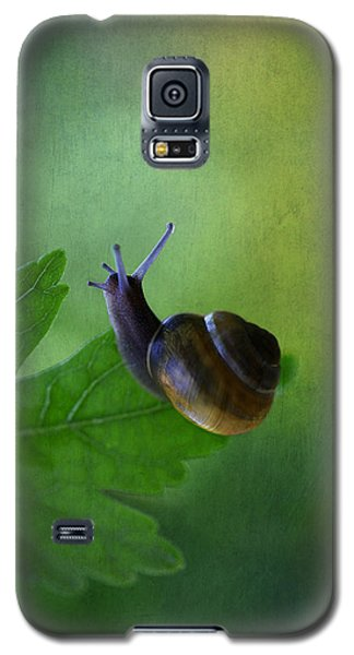 I'm Not So Fast Galaxy S5 Case