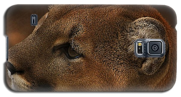 I'm Watching You... Galaxy S5 Case by Tammy Schneider