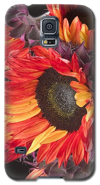 Imagination - Sunflower 01 Galaxy S5 Case