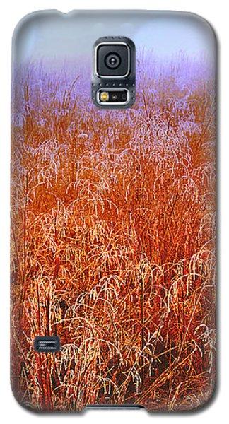 Imagine Galaxy S5 Case