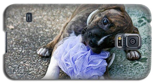Imma Git U    Pit Bull Pup Galaxy S5 Case