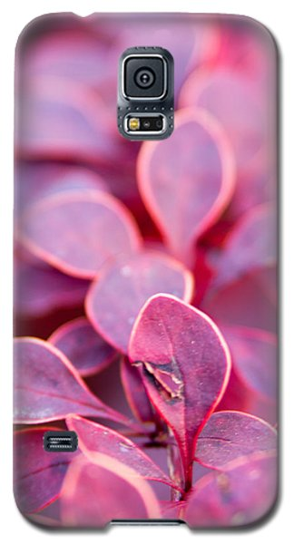 Galaxy S5 Case featuring the photograph Imperfect by Erin Kohlenberg