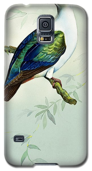 Imperial Fruit Pigeon Galaxy S5 Case by Bert Illoss
