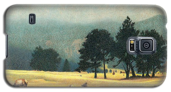 Impression Evergreen Colorado Galaxy S5 Case