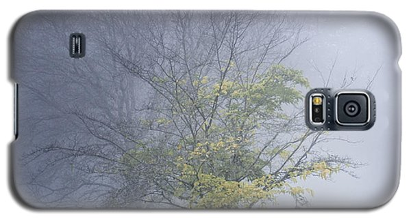 In A Fog Galaxy S5 Case