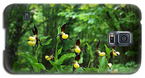 Galaxy S5 Case featuring the photograph In A Forest Glade by Kennerth and Birgitta Kullman