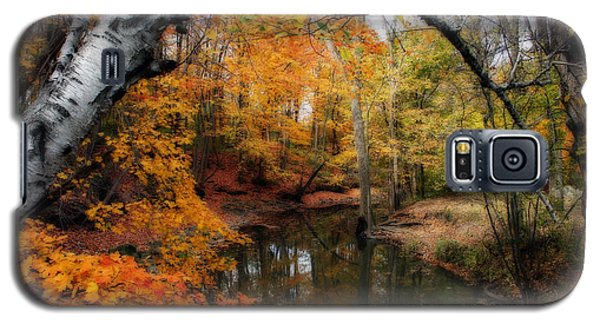 Galaxy S5 Case featuring the photograph In Dreams Of Autumn by Kay Novy