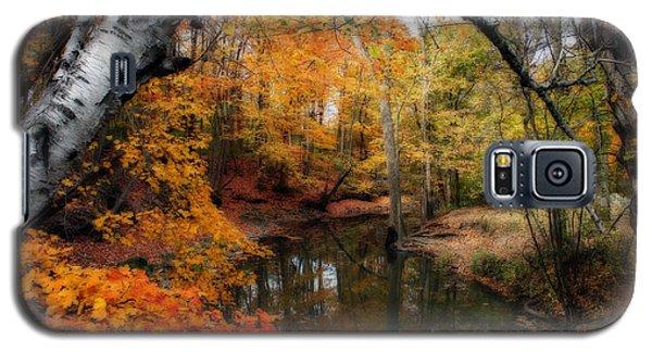 In Dreams Of Autumn Galaxy S5 Case