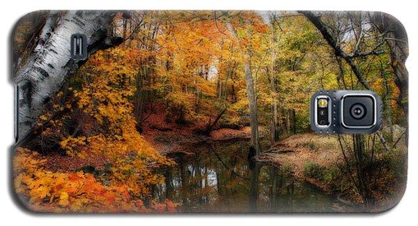 In Dreams Of Autumn Galaxy S5 Case by Kay Novy