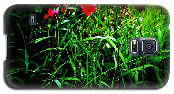 In Flanders Fields Galaxy S5 Case by Mariana Costa Weldon