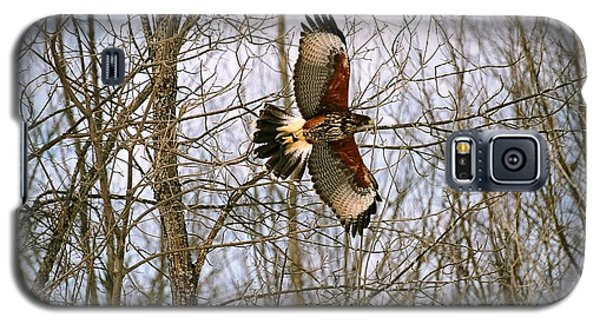 Galaxy S5 Case featuring the photograph In Flight by David Porteus