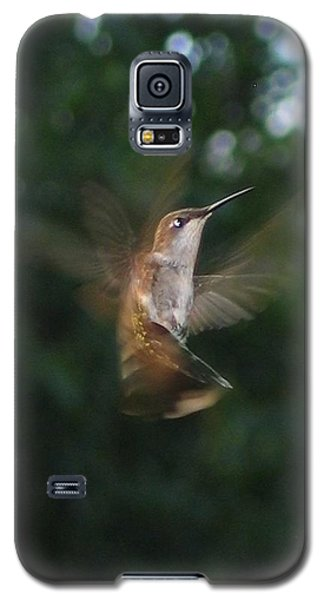 Galaxy S5 Case featuring the photograph In Flight by Photographic Arts And Design Studio