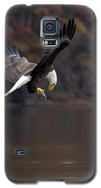 Galaxy S5 Case featuring the photograph In Flight Snack by Alan Raasch