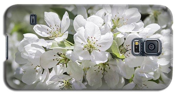 In Full Bloom Galaxy S5 Case