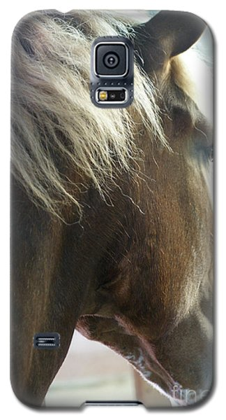 Galaxy S5 Case featuring the photograph In His Farthest Wanderings Still He Sees by Linda Shafer
