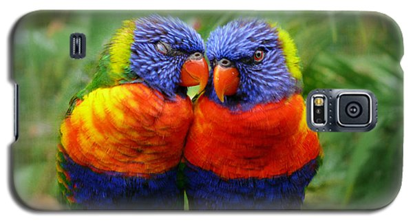 In Love Lorikeets Galaxy S5 Case
