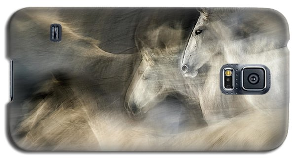 White Horse Galaxy S5 Case - In Motion by Milan Malovrh