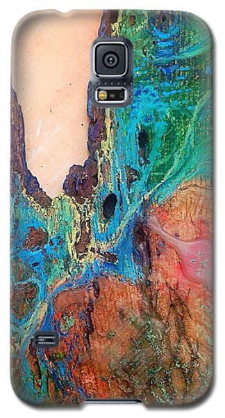 Galaxy S5 Case featuring the mixed media In Situ  by Delona Seserman
