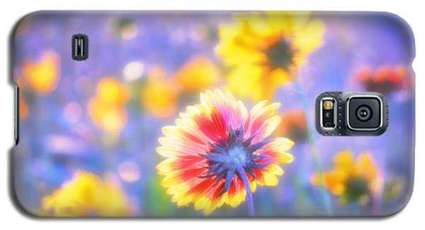 In Summer The Song Sings Itself Galaxy S5 Case