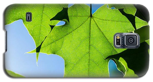 In The Cooling Shade - Featured 3 Galaxy S5 Case by Alexander Senin