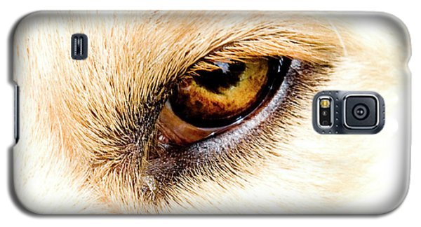 Galaxy S5 Case featuring the photograph In The Eyes.... by Rod Wiens