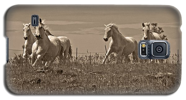 Galaxy S5 Case featuring the photograph In The Field D5959 by Wes and Dotty Weber