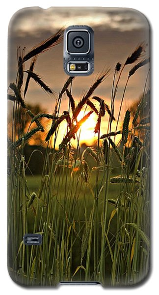 In The Field Galaxy S5 Case