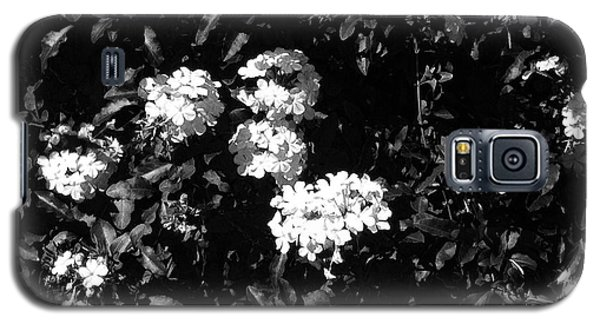 Galaxy S5 Case featuring the photograph In The Garden- Black And White by Alohi Fujimoto