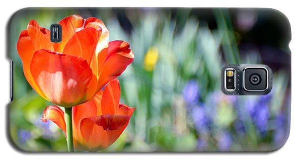 In The Garden Galaxy S5 Case