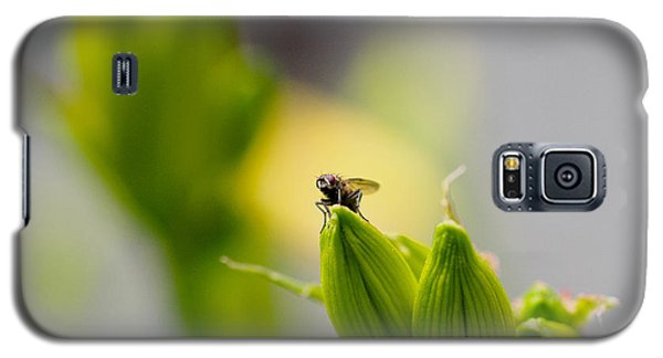 In The Garden - The Champ Galaxy S5 Case