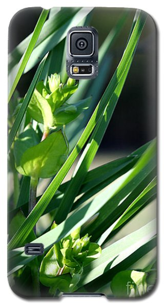 In The Grass Galaxy S5 Case
