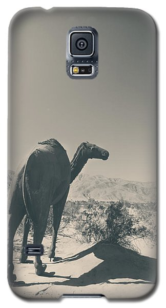 In The Hot Desert Sun Galaxy S5 Case by Laurie Search