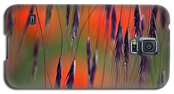 In The Meadow Galaxy S5 Case by Heiko Koehrer-Wagner