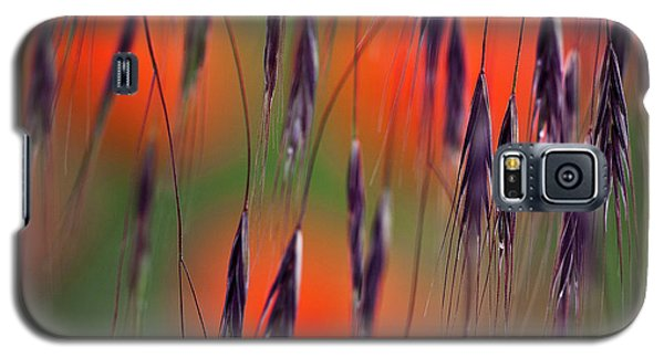 In The Meadow Galaxy S5 Case