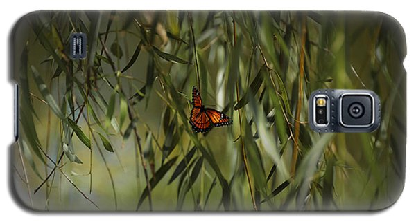 in the memory of Papillon Galaxy S5 Case