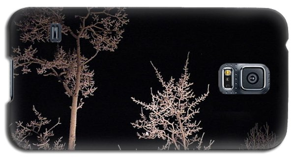 Galaxy S5 Case featuring the photograph In The Night Garden by Brian Boyle